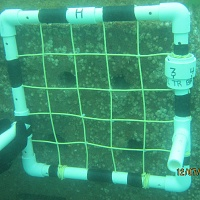 "A grid helps divers inspect every inch of wall surface. The smaller tunnels are 2"" in diameter, the larger tunnels are 3"" in diameter."